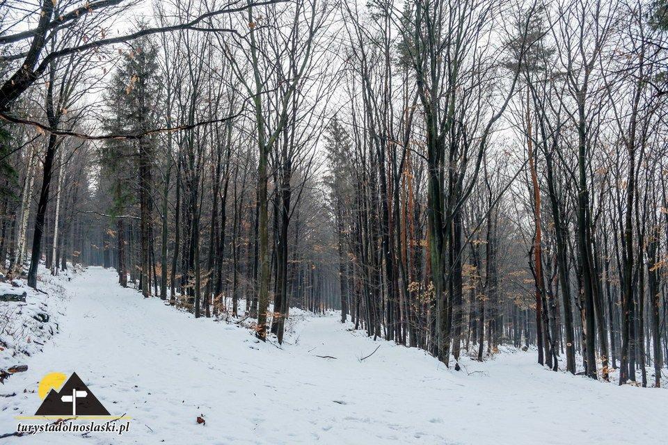 Turystyka zimowa na Dolnym Śląsku