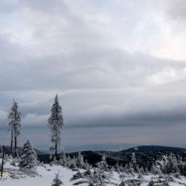 Śnieżnik nie tylko zimą