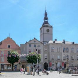 Dzierżoniów Śląski – miasto smoka i miodu